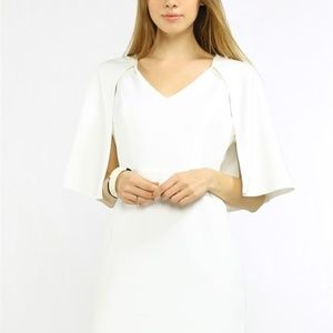 Regal Cape Dress